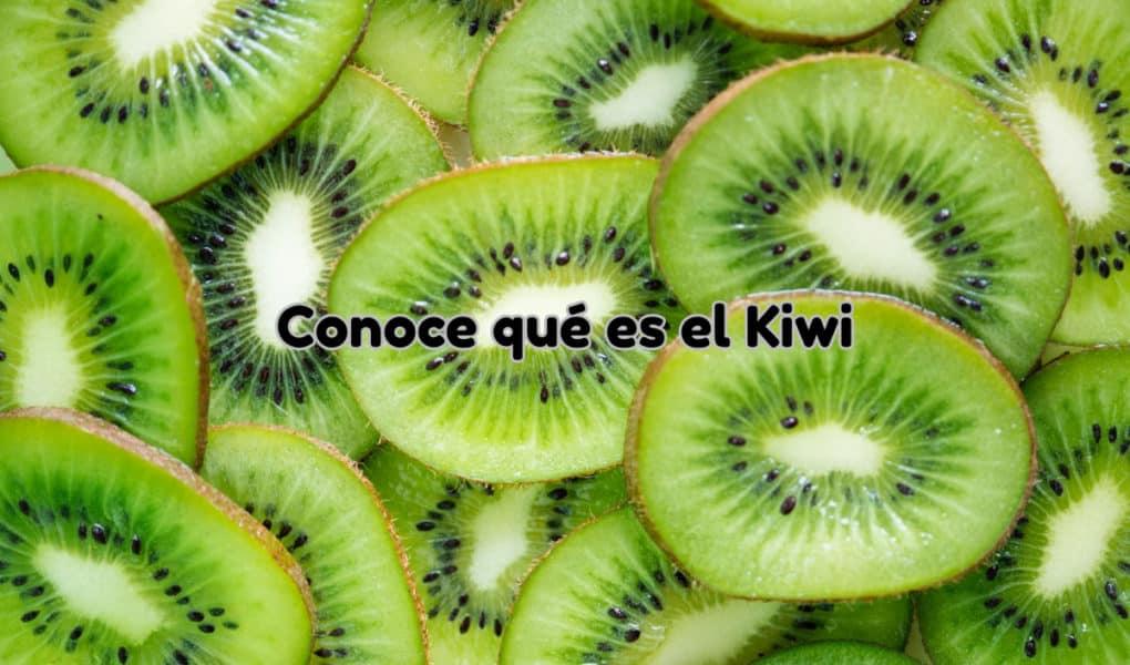 Qué es el kiwi