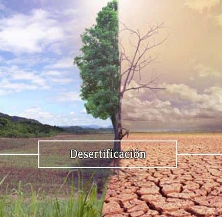 desertificacion-inminente